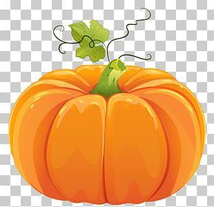 Pumpkin PNG