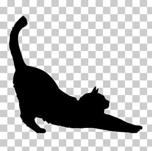Black Cat Silhouette Kitten PNG