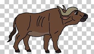 Dairy Cattle Water Buffalo African Buffalo Drawing PNG