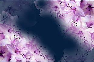 Fantasy Purple Flower PNG