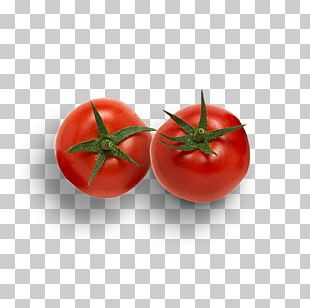 Hamburger Roma Tomato Cherry Tomato Vegetable Pizza PNG
