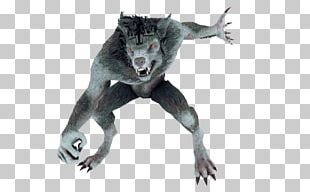 Werewolf 3D Computer Graphics Animation PNG