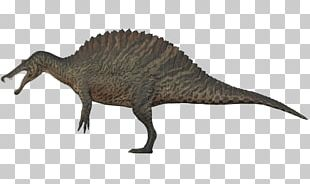 Tyrannosaurus Spinosaurus Baryonyx Giganotosaurus Utahraptor PNG