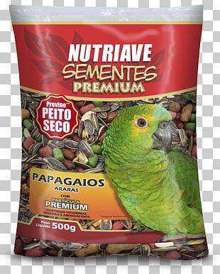 Bird Food Atlantic Canary Pet Food Parrot PNG