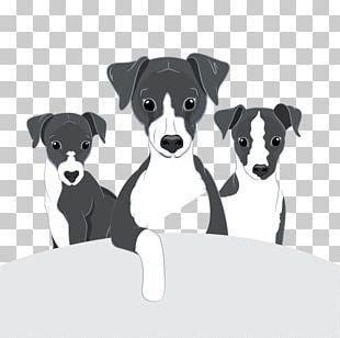 Dog Breed Italian Greyhound Puppy Companion Dog PNG