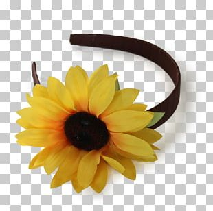 Flower Crown Headband Wreath Petal PNG