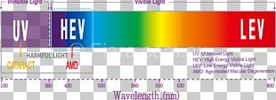 Effects Of Blue Light Technology Visible Spectrum High-energy Visible Light Wavelength PNG