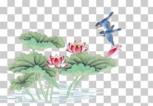 China Bird-and-flower Painting Chinese Painting Ink Wash Painting Gongbi PNG