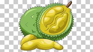 Fruit Durian Food PNG