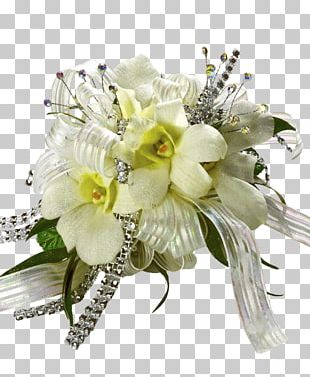 Floral Design Cut Flowers Flower Bouquet Lily Of The Incas PNG