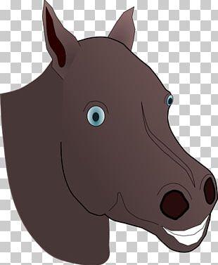 American Quarter Horse Pony Arabian Horse Horse Head Mask PNG