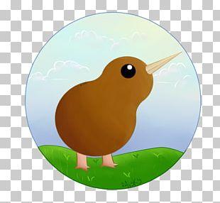 Bird Goose Cygnini Duck Beak PNG