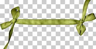 Green Ribbon Hessian Fabric PNG