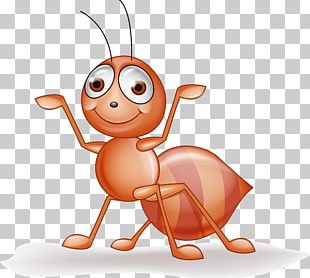 Ant Insect Drawing Illustration PNG