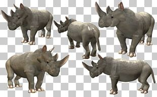 Rhinoceros Spore Creatures Spore Creature Creator Video Game PNG