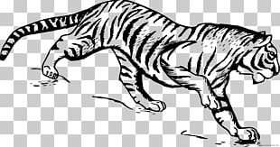 Drawing Line Art Sketch PNG