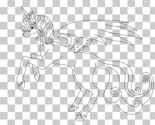 Tennessee Walking Horse Line Art Drawing Sketch PNG