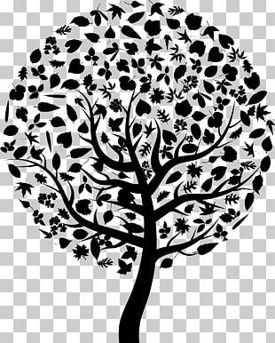 Tree Silhouette Abstract Art PNG