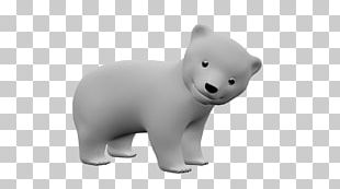 Polar Bear Carnivora Animal Snout PNG