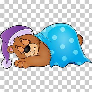 Bear Sleep PNG