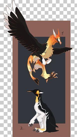 Water Bird Illustration Bird Of Prey Fauna PNG