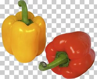 Bell Pepper Chili Pepper Vegetable Food PNG