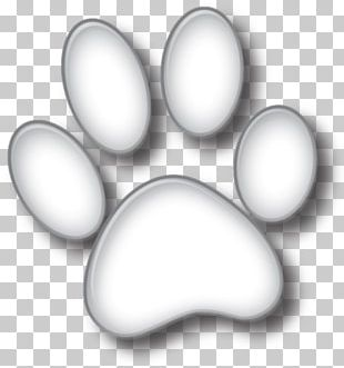 Paw Puppy Boxer Cat Veterinarian PNG