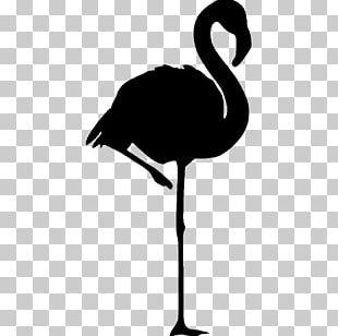Flamingo Logo Pink PNG