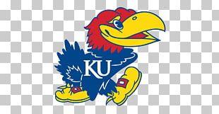 University Of Kansas Kansas Jayhawks Men's Basketball Kansas Jayhawks Football NCAA Men's Division I Basketball Tournament Kansas Jayhawks Baseball PNG