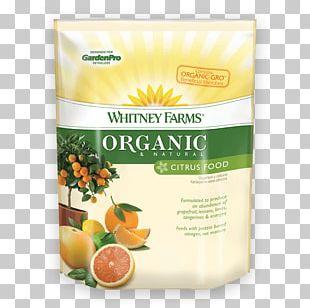 Lemon Organic Food Vegetarian Cuisine Natural Foods PNG
