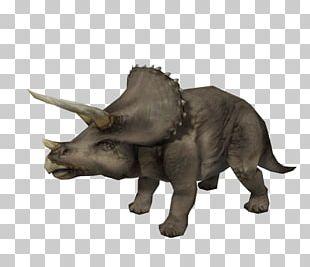 Triceratops Torosaurus Jurassic Park: Operation Genesis Styracosaurus Tyrannosaurus PNG