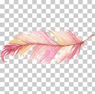 Watercolor Painting Feather Logo PNG