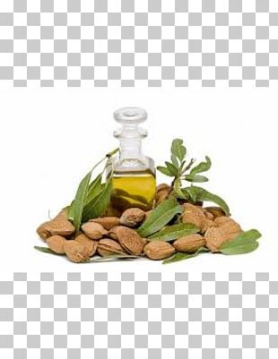 Glass Bottle Herbalism Vegetable Oil Alternative Health Services Soybean Oil PNG