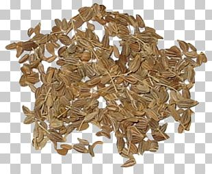 Spice Star Anise Seed Herb PNG