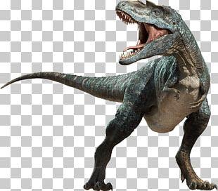 Dinosaur Velociraptor PNG