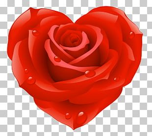 Heart Valentines Day Rose PNG