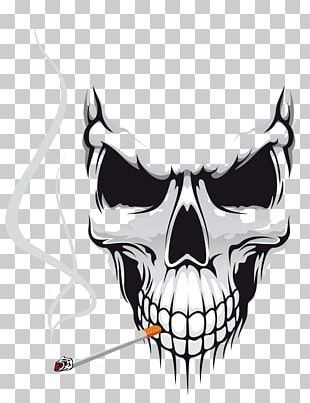Skull Euclidean Stock Photography PNG