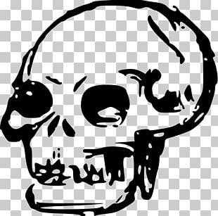 Human Skull Symbolism Drawing PNG