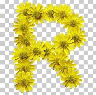 Flower Letter Typeface Typography Font PNG