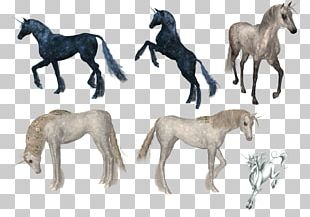 Horse Unicorn Computer Icons PNG