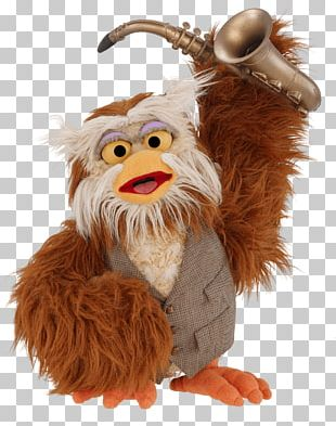Hoots The Owl Big Bird Elmo Grover Telly Monster PNG