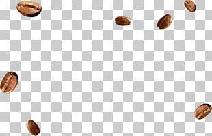 MacCoffee Food Nut Brand PNG