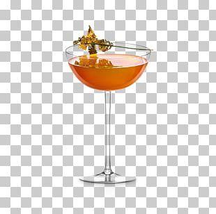 Cocktail Garnish Wine Cocktail Martini Manhattan PNG