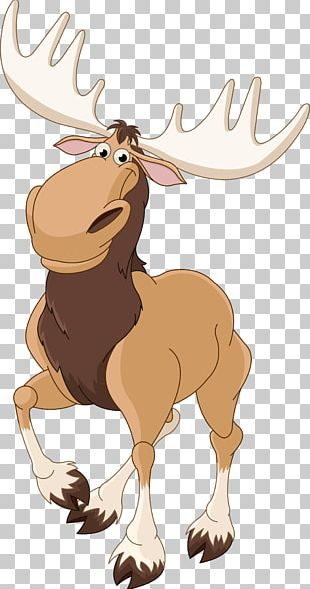 Elk Moose Deer PNG