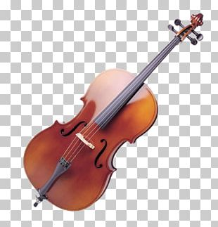 Violin Musical Instruments Cello String Instruments Viola PNG