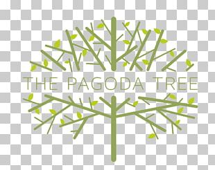 The Pagoda Tree Menstrual Cycle Menstruation Hormonal Contraception Ovulation PNG