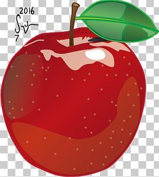 Apple Drawing Shading PNG