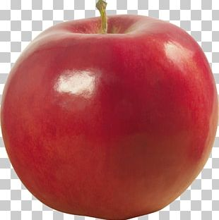 Apple Food Accessory Fruit Information PNG