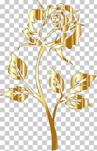 Golden Rose Golden Rose PNG