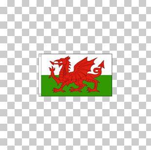 St Davids Cardiff Saint David's Day Welsh PNG